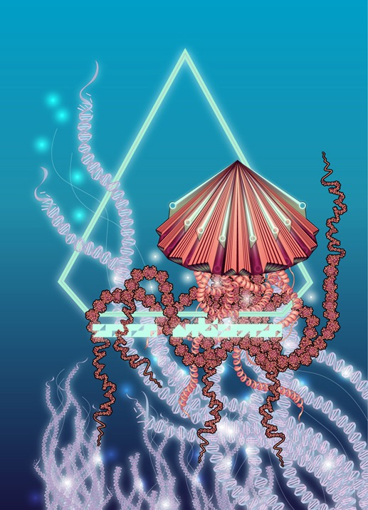 abstract fantastic psychedelic vector fantastic japanese geometric surrealistic origami japanese jellyfish zoologie