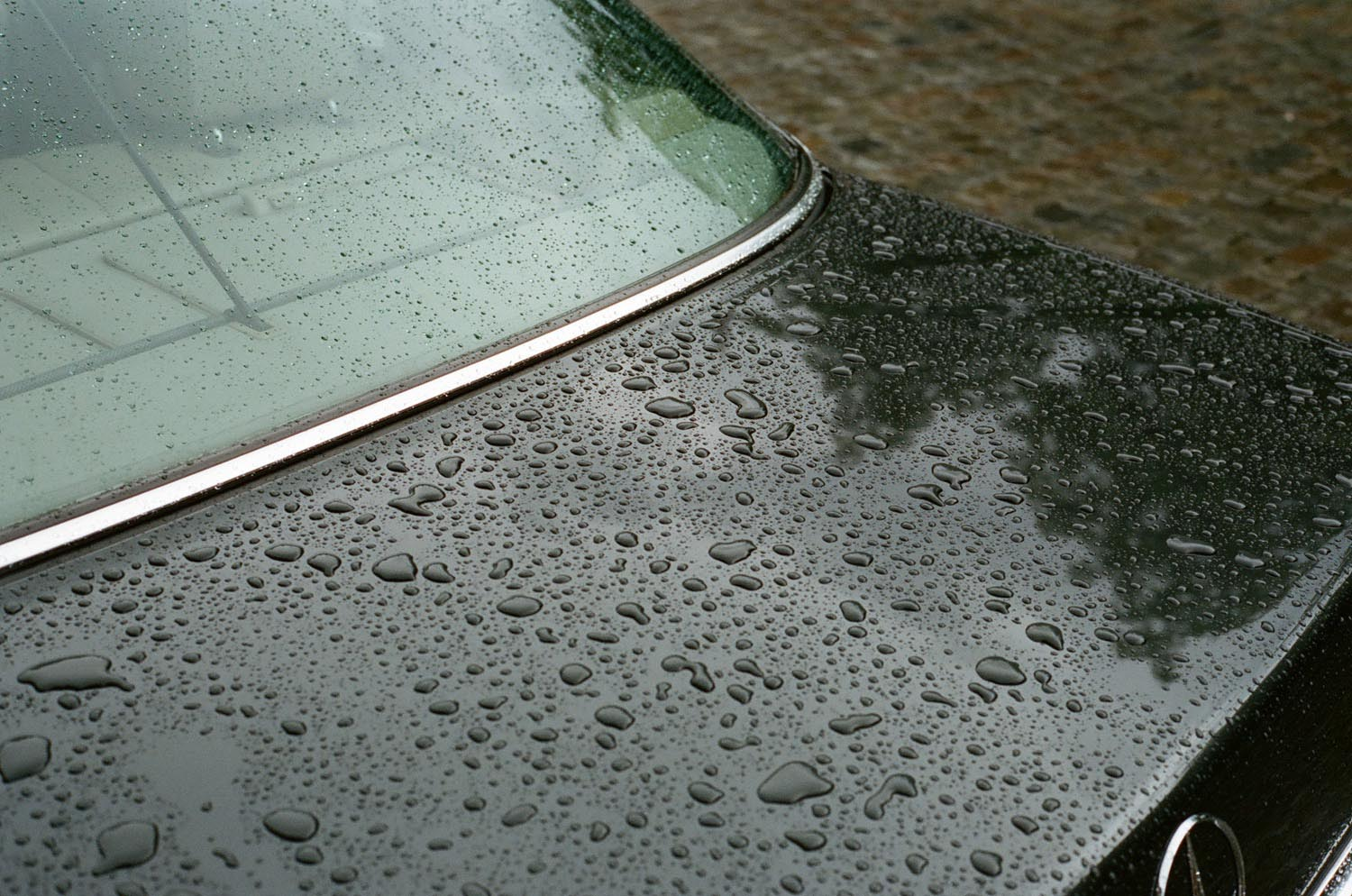car wet rain trunk