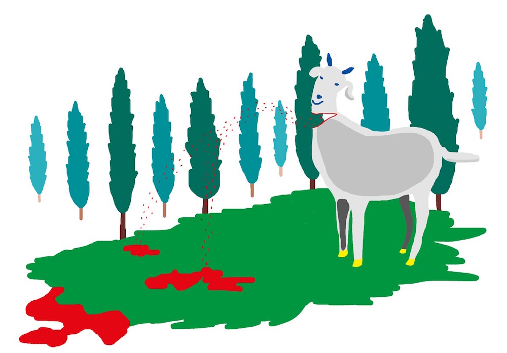 illustration, illustrations, illustrator, illustrators, goat, goats, wound, injury, forest, pasture, tree, trees, horn, horns, blood, bleeding