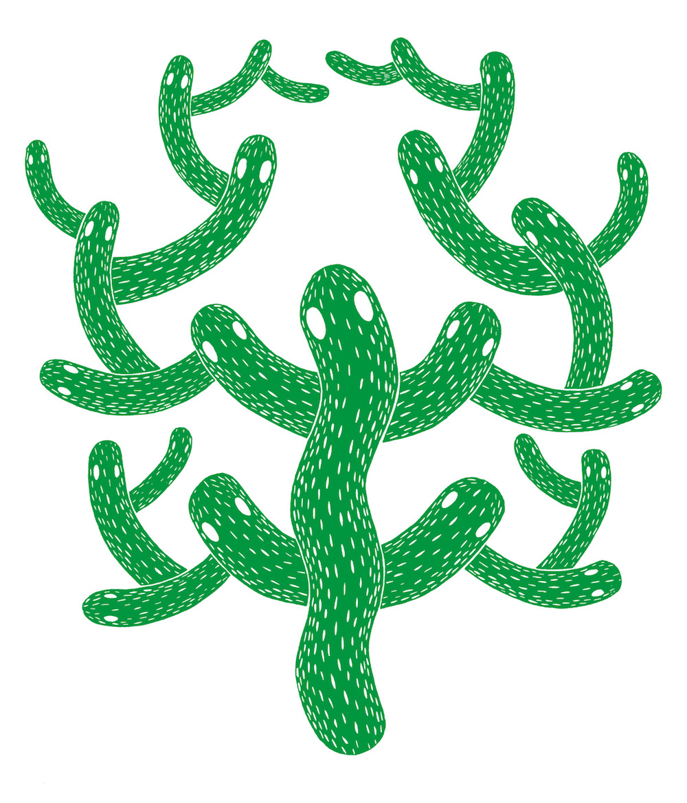 illustration, illustrations, illustrator, illustrators, cactus, cacti, eye, eyes, stroke, strokes, playful, plant, plants