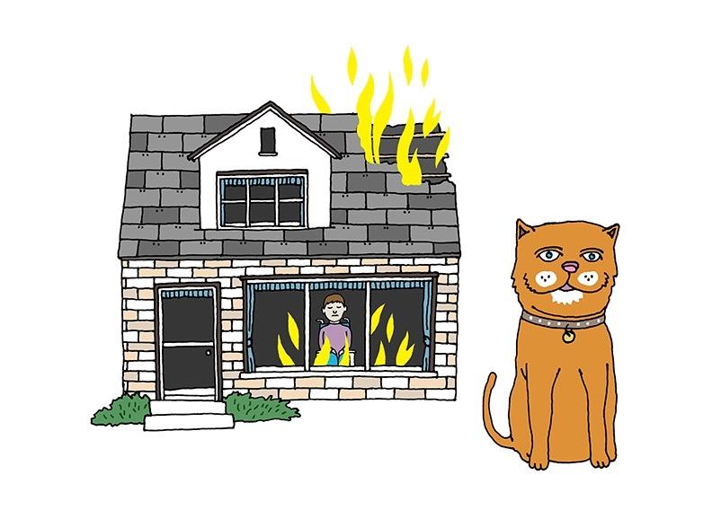 hand drawing vector figurative humorous emotion people man animal cat burning burn house wheelchair saved