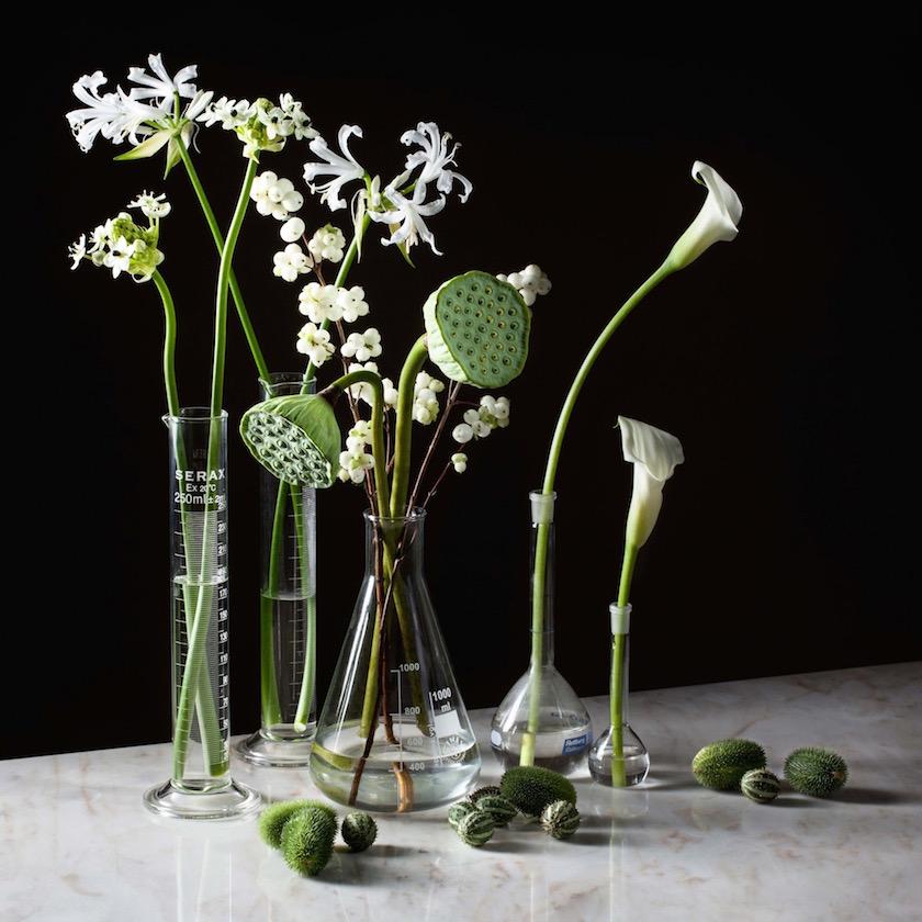 flowers still flower marble