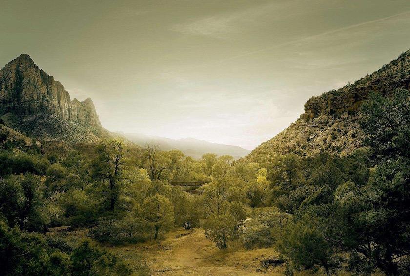 photo photos photography photographer photographers green mountain plant plants tree trees light sun sunny