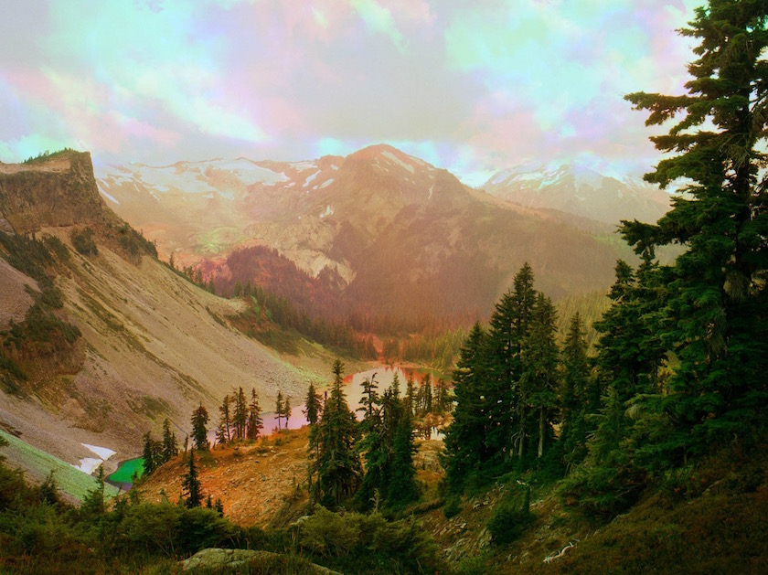 photo photos photographer photographers photography nature light coloreffect effect blurry forest layers reflection mountain hill snow tree trees green rose pink
