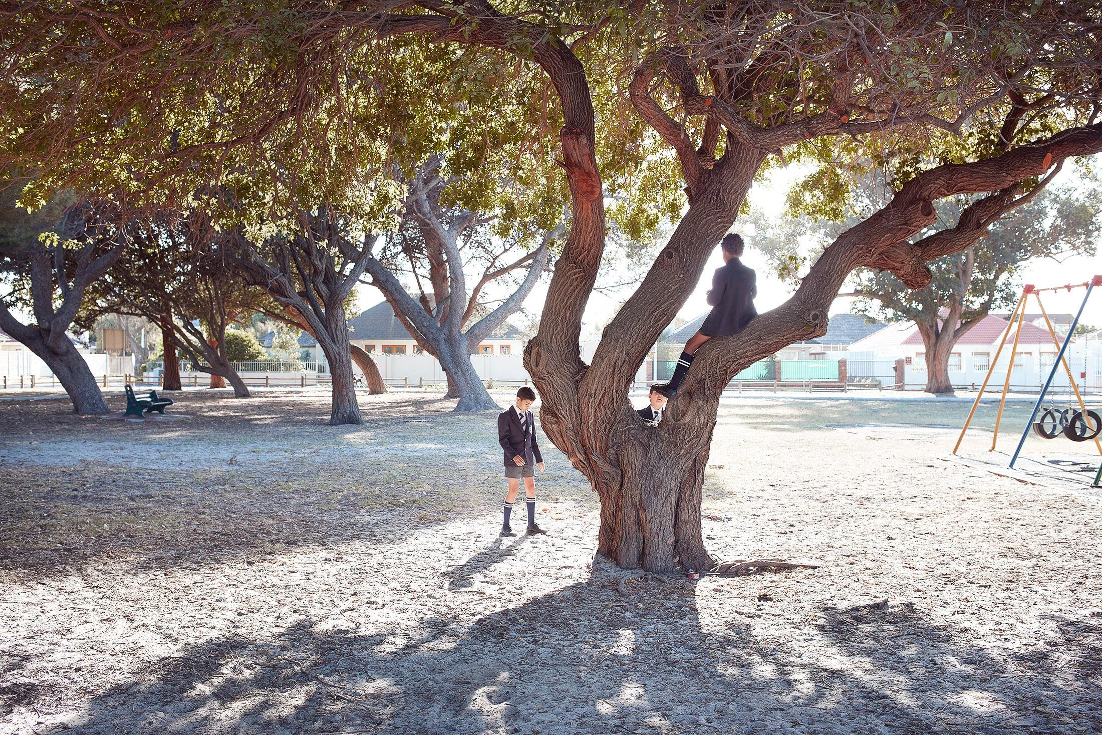 photo photography photographer school uniform education boy boys friends tree climb climbing playgound