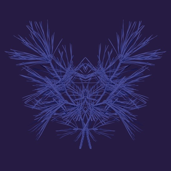 illustration, illustrations, illustrator, illustrators, plant, plants, twig, twigs, bloom, blooming, dreamy, symmetry, symmetrical