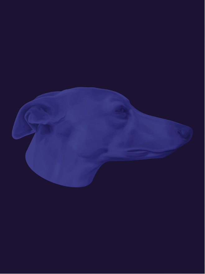 illustration, illustrations, illustrator, illustrators, dog, dogs, head, float, floating, greyhound
