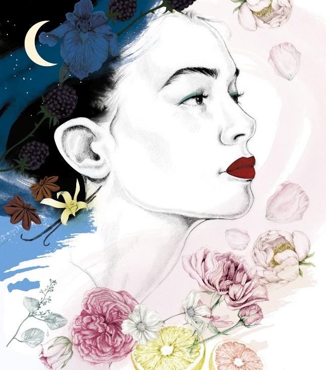 illustrator, illustrators, illustration, illustrations, moon, stars, anise, herbs, vanilla, dream, dreamy, citrus, grapefruit, flower, flowers, berry, berries, fruit, night, day