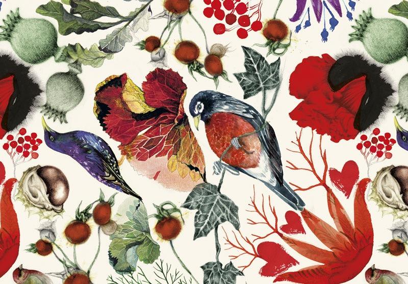 illustrator, illustrators, illustration, illustrations, flower, floral, composition, texture, leaf, leaves, bird, birds, brushstrokes, berries