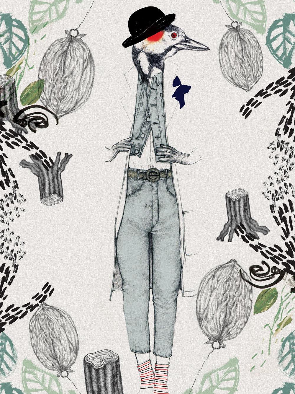 illustrator, illustrators, illustration, illustrations, leaf, leaves, print, stamp, tree trunk, bird, birds, walnut, walnuts, suit, suits, retro, hat, stippling