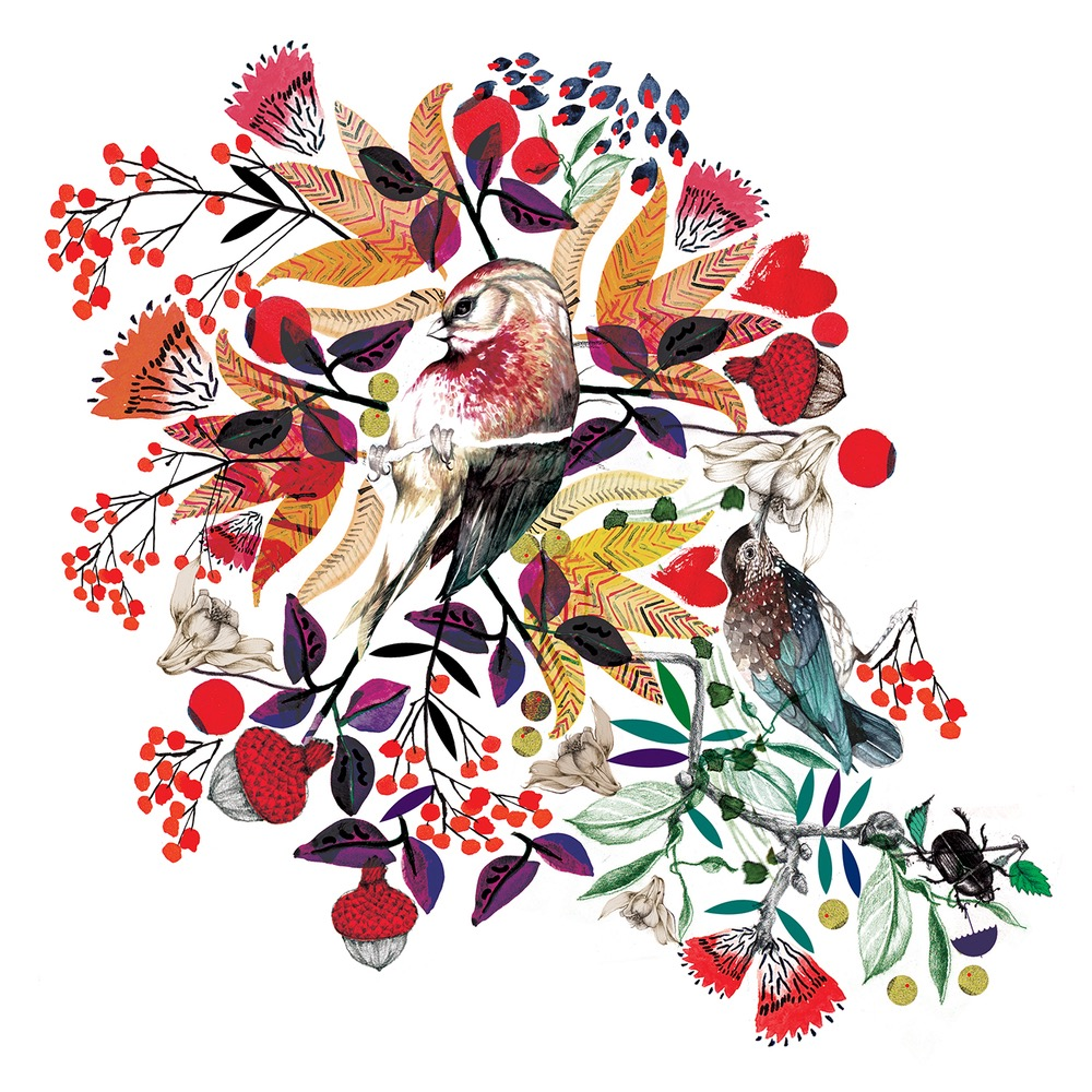 illustrator, illustrators, illustration, illustrations, flower, floral, acorn, acorns, fall, warm, composition, texture, leaf, leaves, bird, birds, brushstrokes, berries