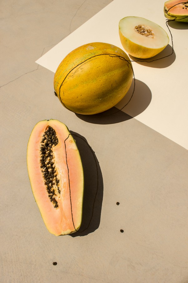 Jacob Reischel We Art