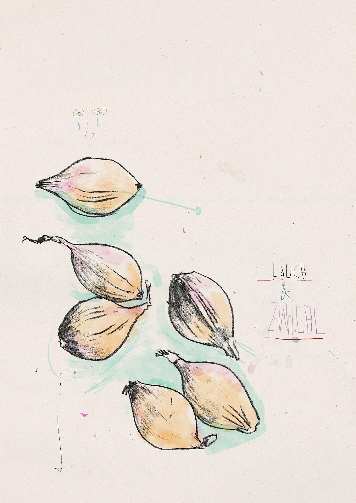 food lauch zwiebel onion leeks scribble sketch sketching shallot