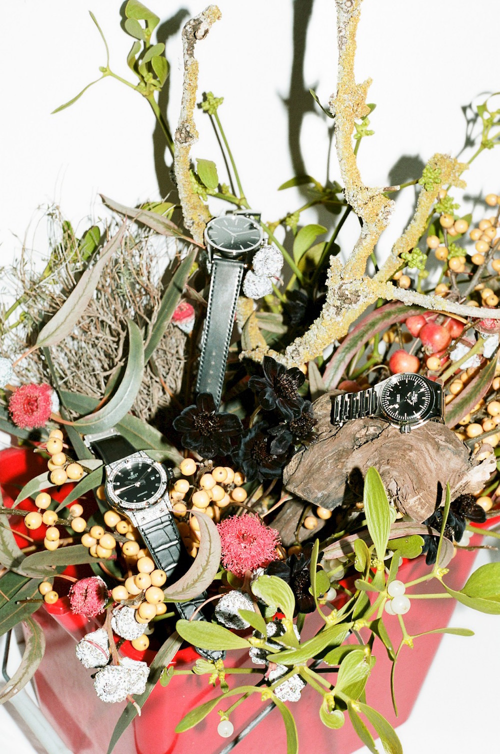 photo photos photography photgrapher photographers floral arrangement botanical watch watches wristwatch jewelry leaves leaf branch branches flower flowers moss rock rocks