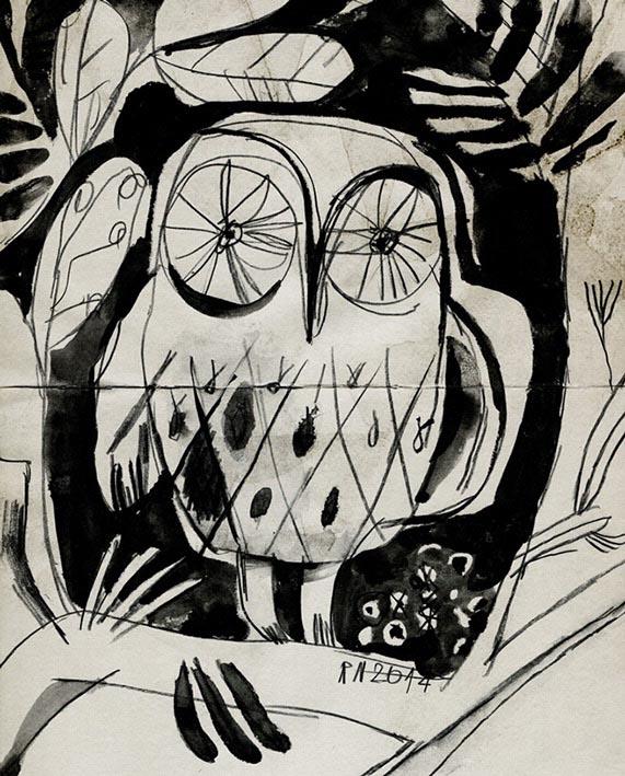 animal animals bird birds owl