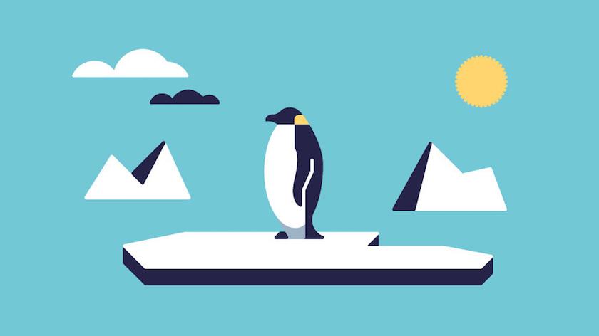 vector minimal animal animals bird birds penguin ice sea ocean cold antarctica