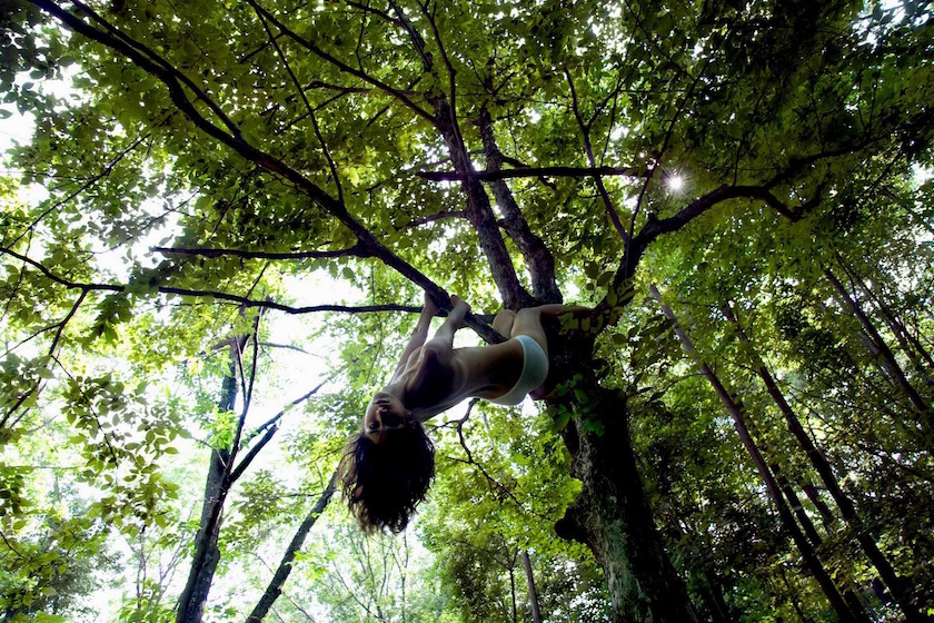 woman naked topless tree hanging hang climb climbing green sun sunny warm bight light forest