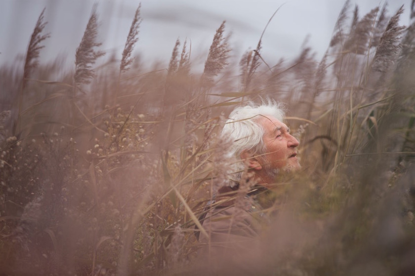 man old senior mature outside field plant plants grass blurry face hidden