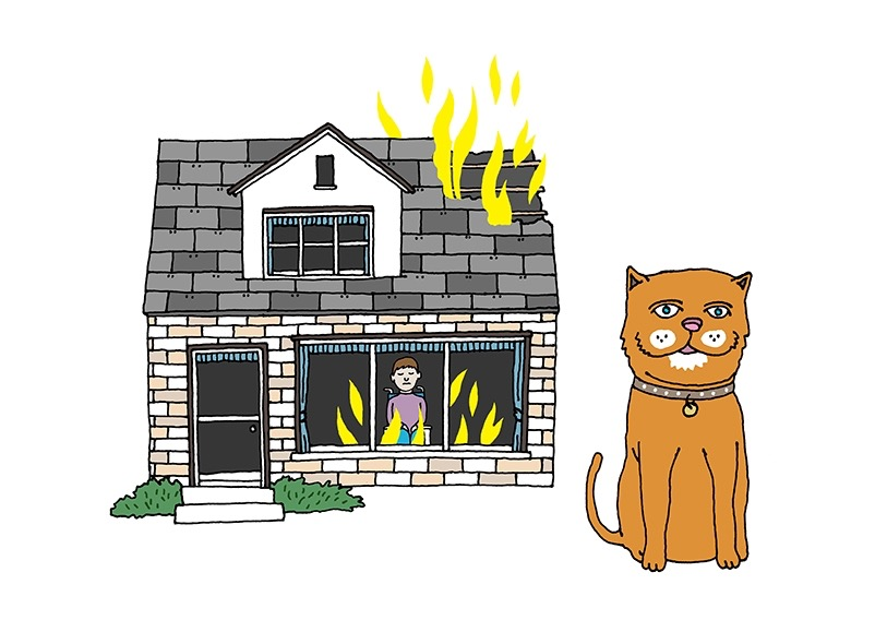 hand drawing vector figurative humorous emotion people man animal cat burning burn house wheelchair saved