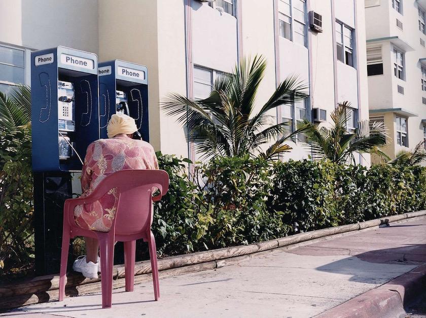 woman outside phone call talk sit sitting pink rose pedestrian path footpath green plant plants palm palms