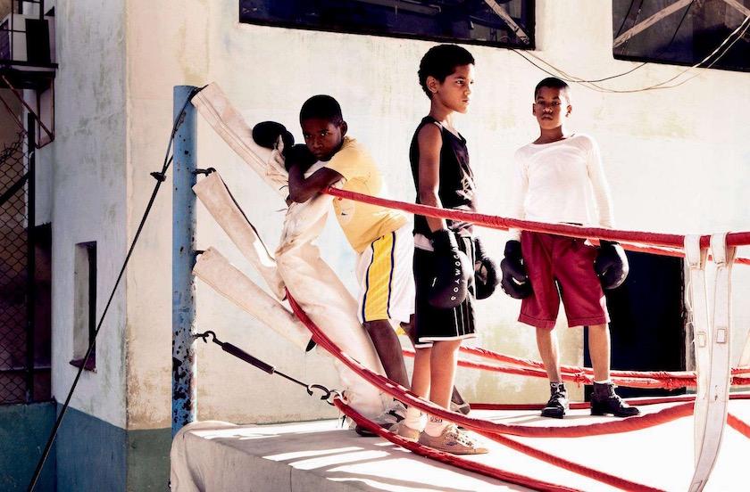 kids boy boys box boxing fight