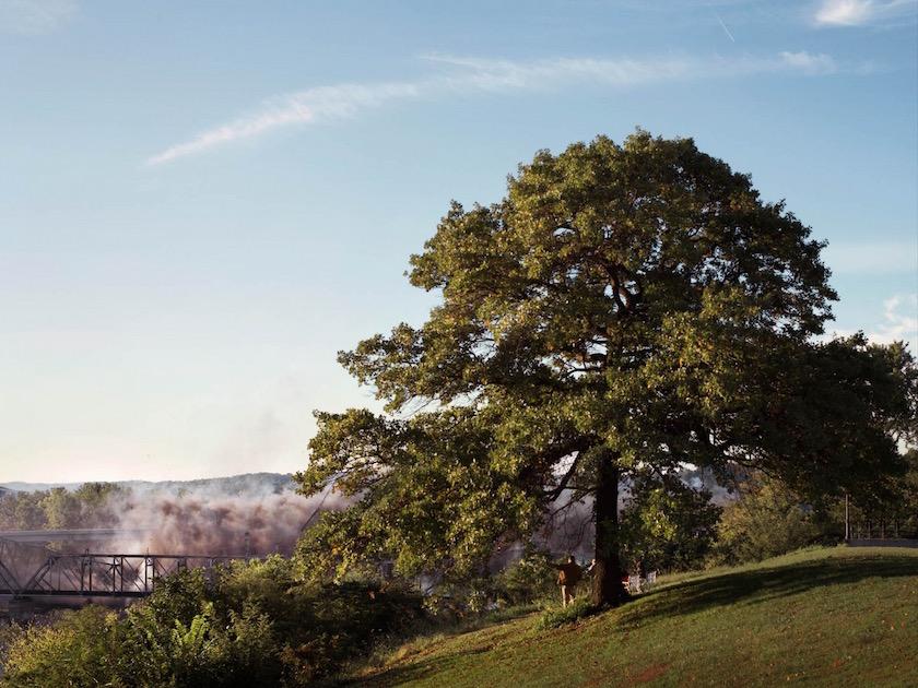 photo photos photographer photographers photography park tree sky explosion smoke bridge