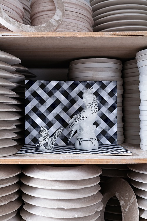 photo photos photography photographer photographers picture pictures image images porcelain factory shelves parrot butterfly