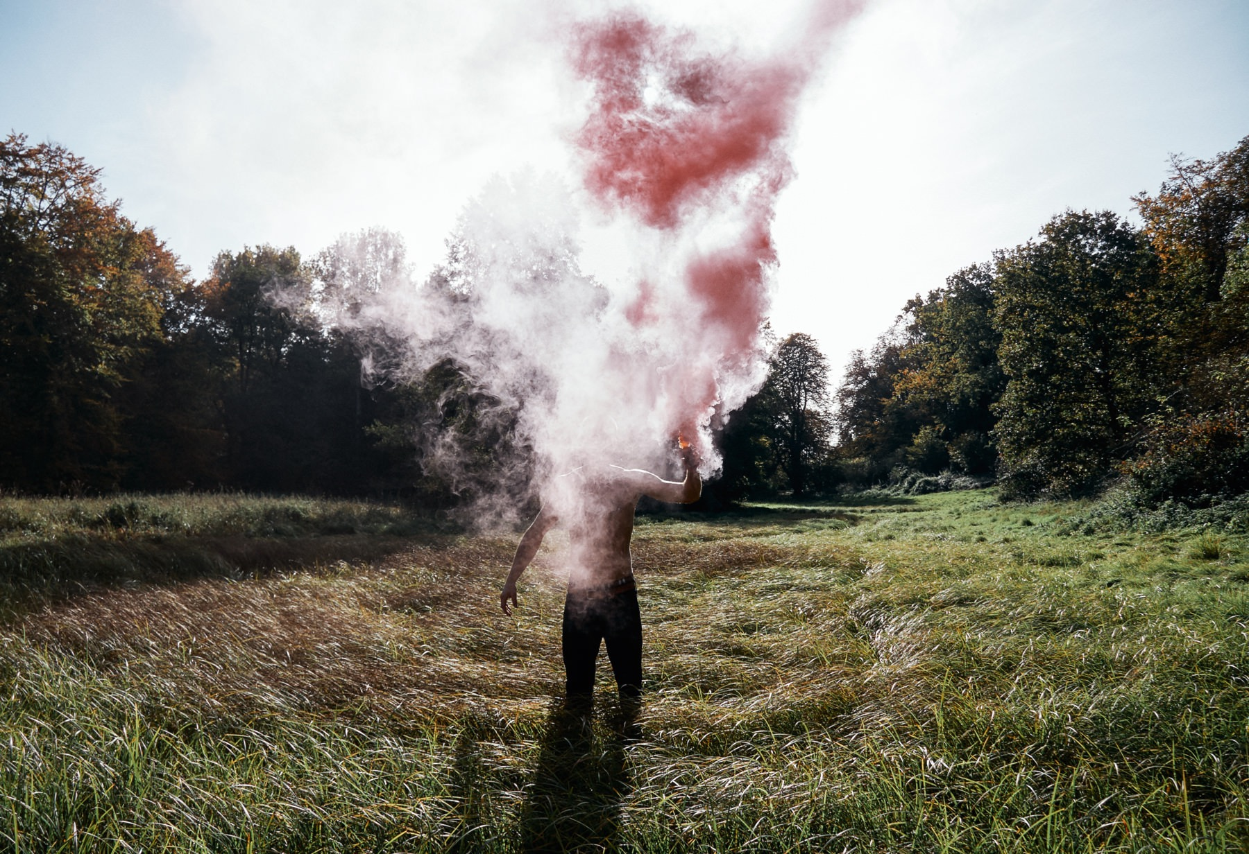 ­photo, photos, photography, photographer, photographers, sunlight, sun, daytime, field, grass, tree, trees, smoke, dust, explosion, explode, man, men, smoke bomb
