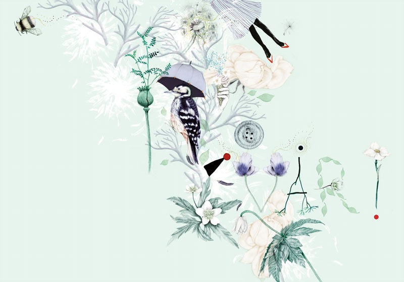 illustrator, illustrators, illustration, illustrations, root, roots, fern, flower, flowers, floral, bee, bees, insects, insect, bug, shoe, shoes, typographic, found objects, composition, peacock, button, woman, women