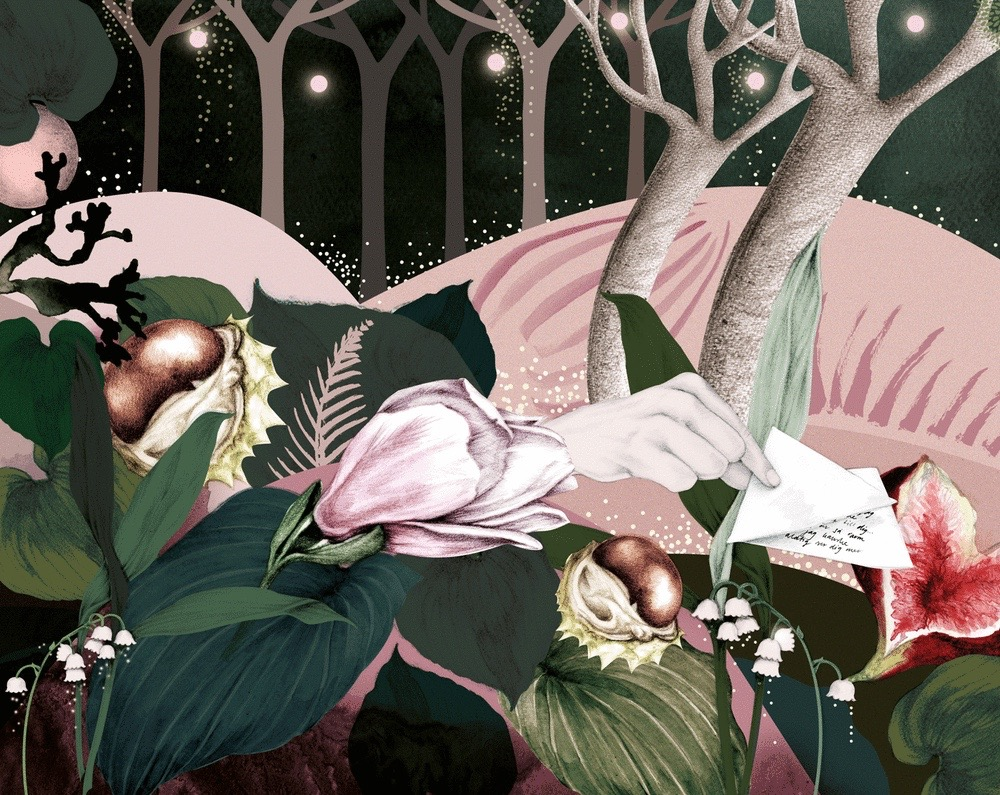 illustrator, illustrators, illustration, illustrations, scene, stars, starry, night, nighttime, letter, hand, hands, fig, figs, fruit, flowers, plants, flower, plant, blooming, tree, trees, hills, forest, lillies